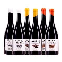Avan Vinos de Viñedo, caja de madera con 6 botellas
