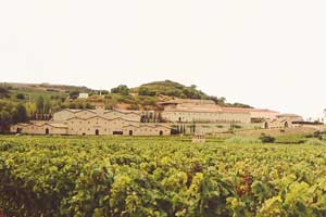 Vista de la bodega y viñedos Marqués de Murrieta