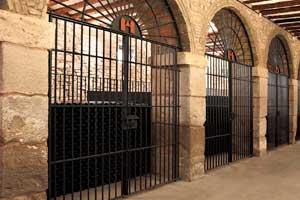 Botellas en celdas en la Bodega Barón de Ley