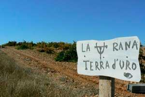 Finca La Rana en Hacienda Terra d'Uro