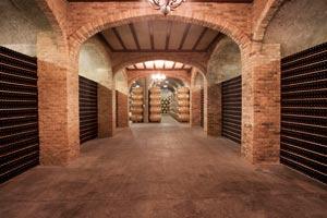 Viña Salceda, sala de barricas y botellas