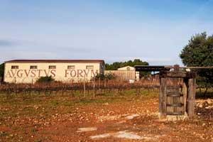 Celler Austus Forum en la zona del Penedés