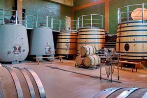 Sala de elaboración en Bodegas Amaren