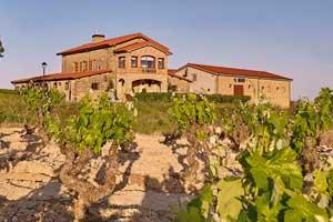 Vista del viñedo y el edificio de las Bodegas Amaren en La Rioja Alavesa