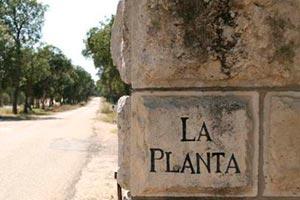 Finca La Planta en Arzuaga Navarro