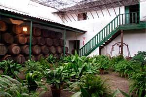 Patio de las pilastras en bodegas Emilio Hidalgo