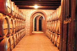Sala de barricas en Bodegas Vinícola Real