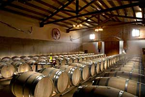 Nave de fermentación en barrica de Chardonnay en Castillo Monjardin