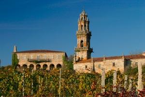 Viñedo O Naranxo con la iglesia y la Rectoral al fondo en Adega Sameirás