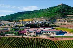 Vista aérea de los viñedos de Villamayor de Monjardin