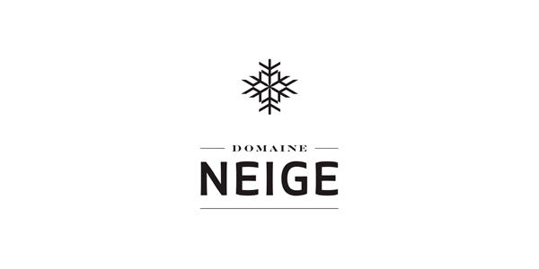 Logo Domaine Neige
