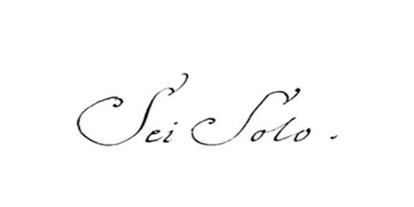 Logo Sei Solo