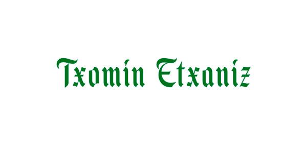Logo Txomín Etxaníz
