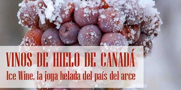 Vinos de Hielo de Canada
