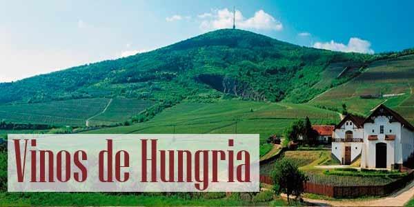 Vinos de Hungría | Tanino Wines